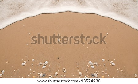 Little sea shell on the beach and white bubble from wave - stock photo