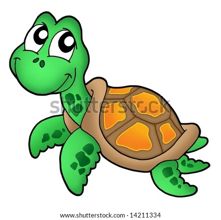 Little sea turtle color illustration