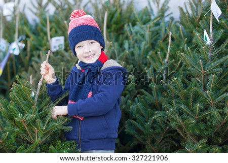 little smiling boy shopping for christmas tree - stock photo