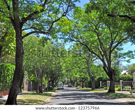 Little suburban street full of green trees. Adelaide, Australia - stock photo