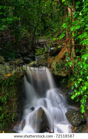 little waterfall near cairns, Queensland, Australia