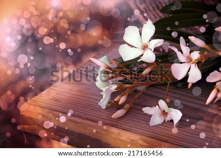 Little White flowers laying in the basket on a wooden table. Outdoors, Summer day view. Summer flowers, Sunshine - stock photo