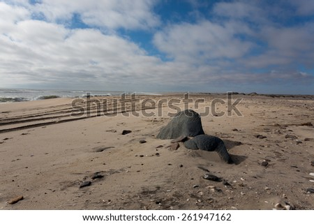 Little withe dunes from Skeleton coast, Namibia - stock photo