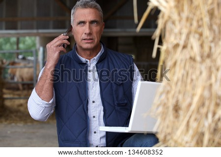 Livestock farm - stock photo