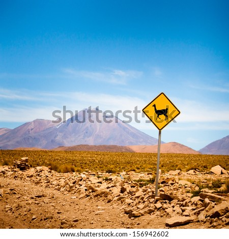 Llama road sign in Bolivia, Andes, South America - stock photo