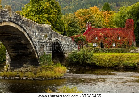 Llanrwst  bridge and court house covered in red ivy - stock photo