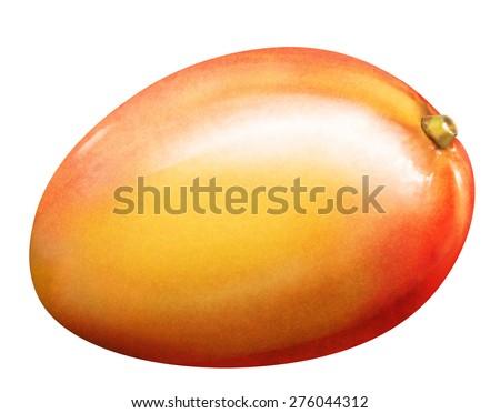 llustration of fresh mango isolated on white background - stock photo