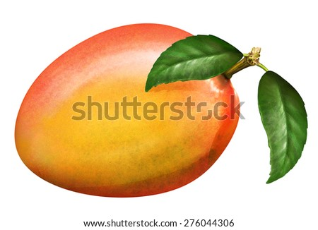 llustration of fresh mango with leaves isolated on white background - stock photo