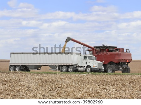 Loading corn from a combine into a truck in a farm field - stock photo
