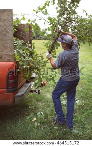 Loading cut tree branches into a truck