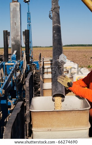 Loading soybean seed into a planter - stock photo