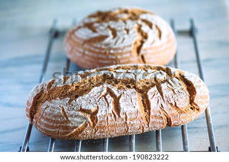 Loaves of bread - stock photo