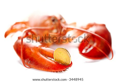 Lobster holding a dollar in the hand. Financial concept. Over white background