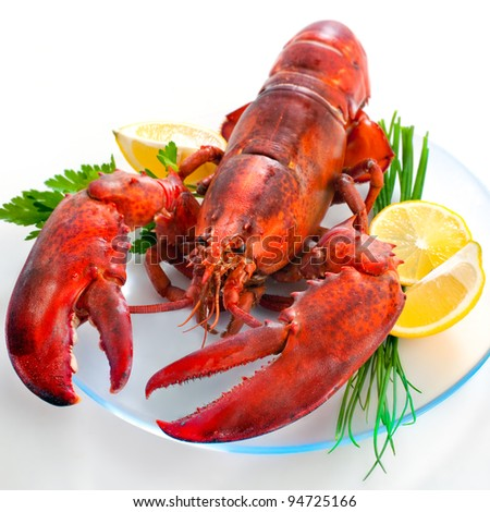 lobster on dish with parsley and lemon slices - stock photo