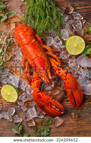 Lobster on ice with herbs and lime - stock photo
