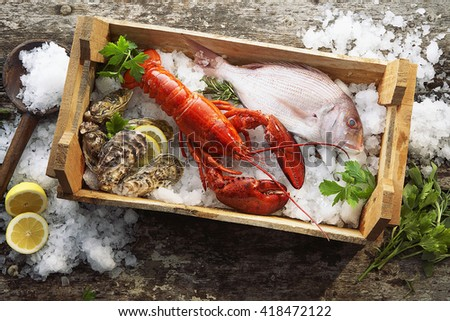 Lobster, oysters and fish on ice - stock photo