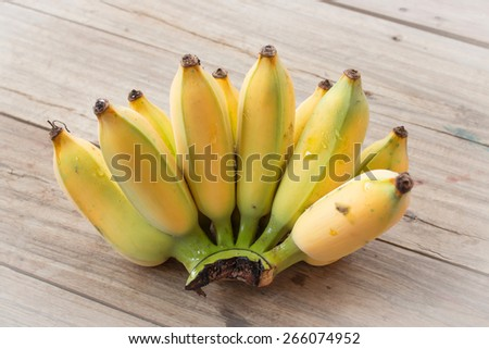 Local Thai Cultivated Banana for Thai ingredient dessert recipes such as glutinous rice steamed in banana leaf, banana in coconut milk. - stock photo