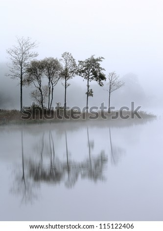 Loch Ard trees in the mist reflecting on the water. Stirlingshire, Scotland - stock photo