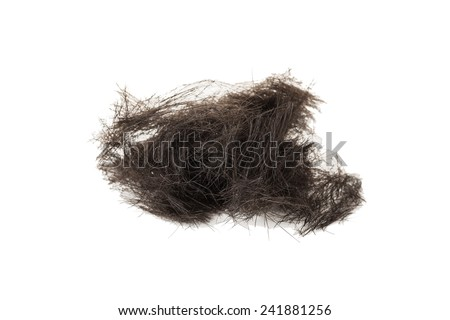 Lock of Black Hair Isolated on a White Background  - stock photo