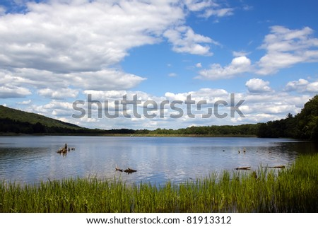 Locust Lake State Park in Schuylkill County,Pennsylvania,USA.