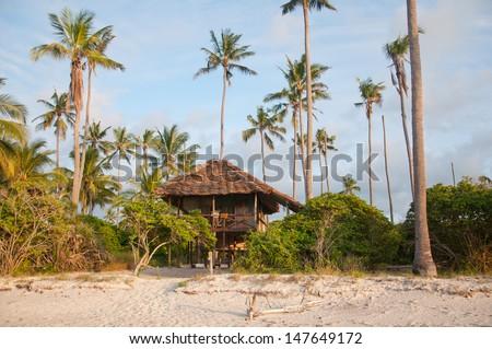 lodge under palm trees on the beach - indian ocean in tanzania national park saadani - stock photo