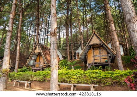 Lodging houses for tourists among the pine trees at Pang Ung (Pang Tong reservoir), Mae Hong Son province, Thailand - stock photo