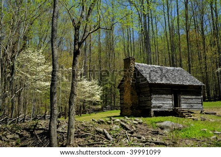 Log Cabin with blooming dogwood trees - stock photo