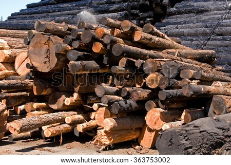 Log Pile at Mill