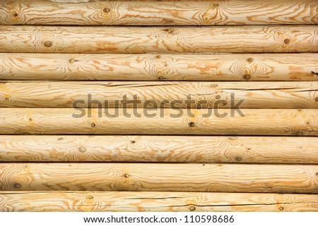 log wall of yellow pine - stock photo