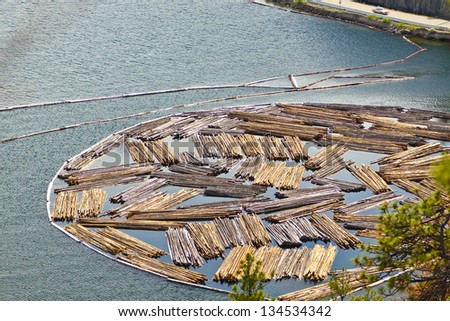 Logging Industry Timber Drop Off Point - stock photo