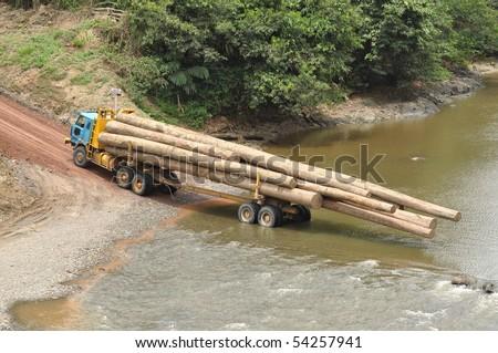 Logging truck in the primary rainforest of Borneo - stock photo
