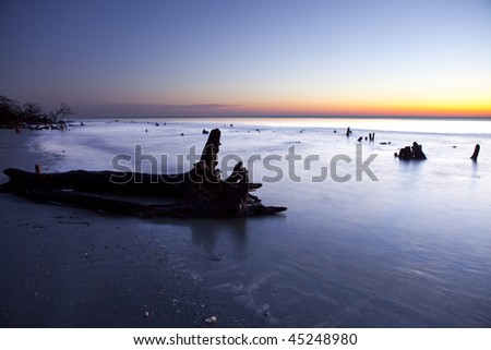 logs and driftwood in the ocean at sunrise - stock photo