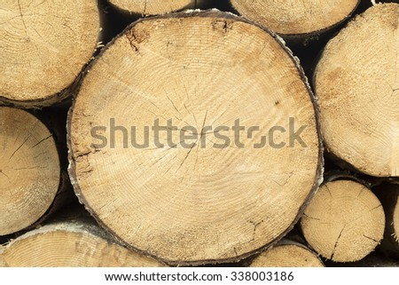 Logs arranged, waiting to be transported to be used in lumber industry