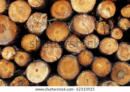 Logs background. - stock photo