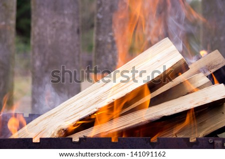 Logs burning in a brazier - stock photo