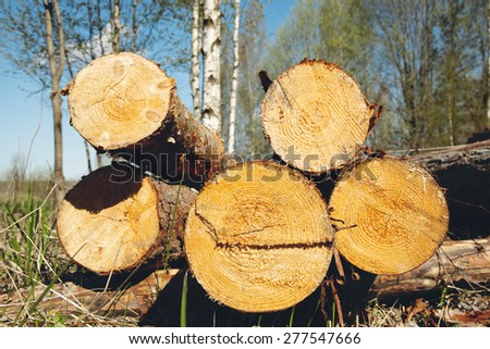 logs for construction - stock photo