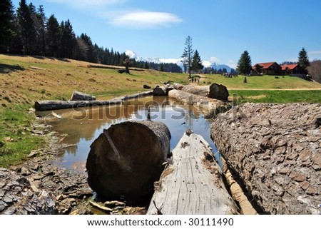 Logs in a meadow pool in the mountains - stock photo