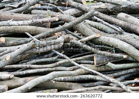 Logs of wood stacked - stock photo