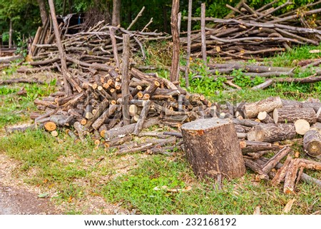 Logs of wood stacked and ready for selling or other usage - stock photo