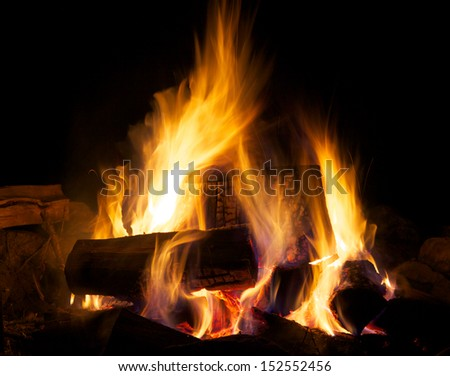 Logs on the Fire - stock photo