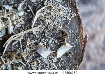 logs, sawdust shavings, stump, wood background, copy space - stock photo