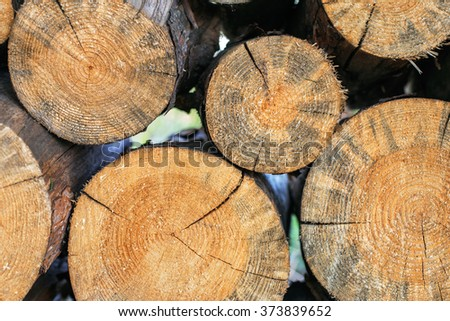 logs stacked in a woodpile close up - stock photo