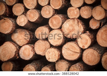 logs stacked texture tree brown - stock photo