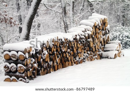 Logs under snow - stock photo