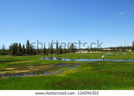 Lone Angler Fly Fishes In Creek In Yellowstone National Park - stock photo