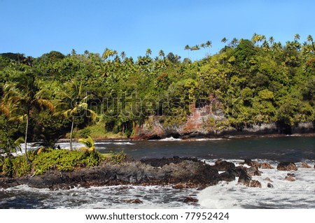 Lone fisherman fishes in the shadow of palm trees on Onomea Bay on the Big Island of Hawaii.  Waves wash and splash against the rocky beach. - stock photo