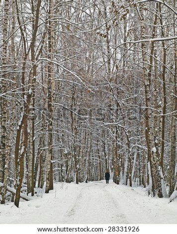 lone man in the wintry wood road - stock photo