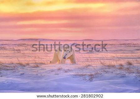 Lone polar bear on Arctic,tundra as the sun sets,digital oil painting. - stock photo