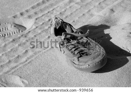 lone sole - stock photo