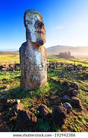 Lone standing moai in bright sunshine in Easter Island - stock photo